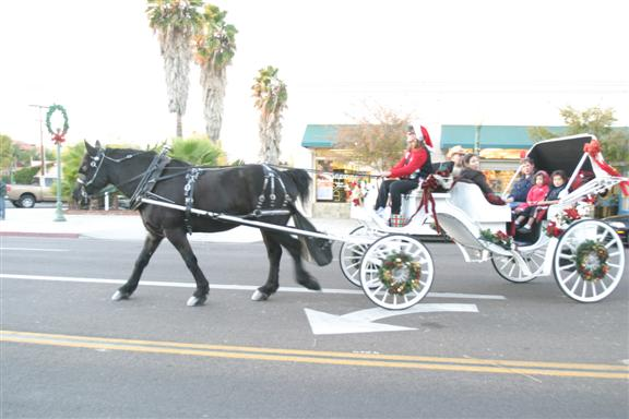 Christmas Tours in Escondido