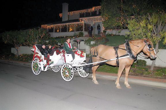 Point Loma Christmas Tours
