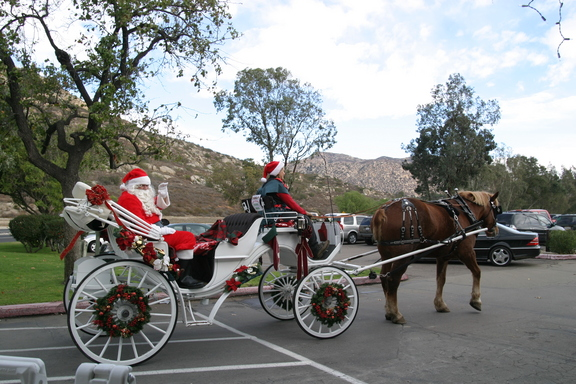San Diego Country Estates Christmas Tours